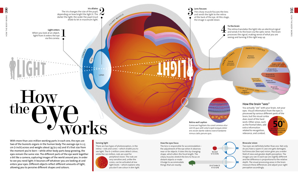 How The Eye Works Tom Howey Book Design And Typography