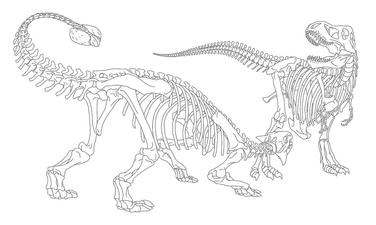 Ankylosaurus amp Tyrannosaurus